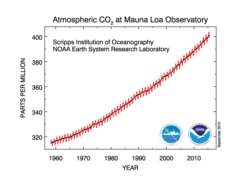 Atmospheric carbon dioxide concentrations, Mauna Loa Observatory.