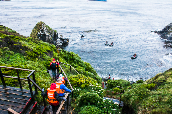 Heading back down the steep incline at Cape Horn, Chile to board the zodiacs.