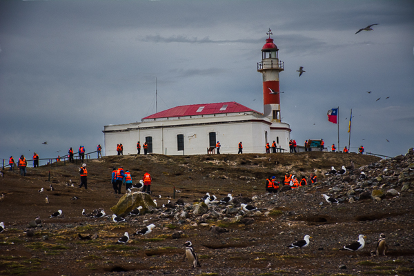Lighthouse at the summit of Magdalena Island, Chile with penguins and other birds.