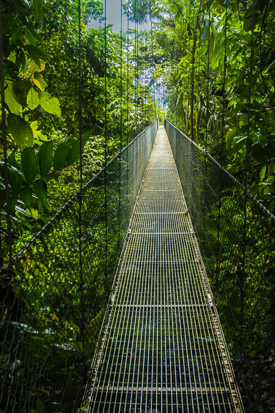 Arenal hanging bridge.