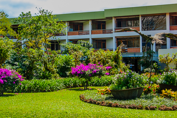 Hotel Boungainvillea from their grounds.