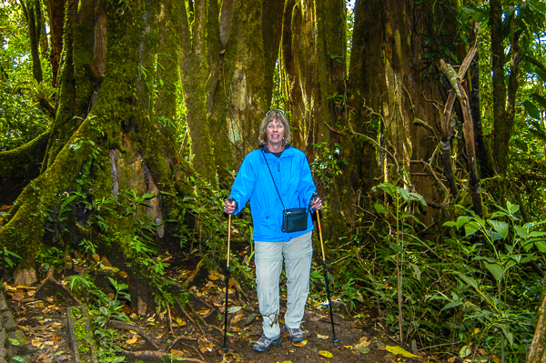 Rebecca in front of a big tree in the Monteverde Cloud forest.