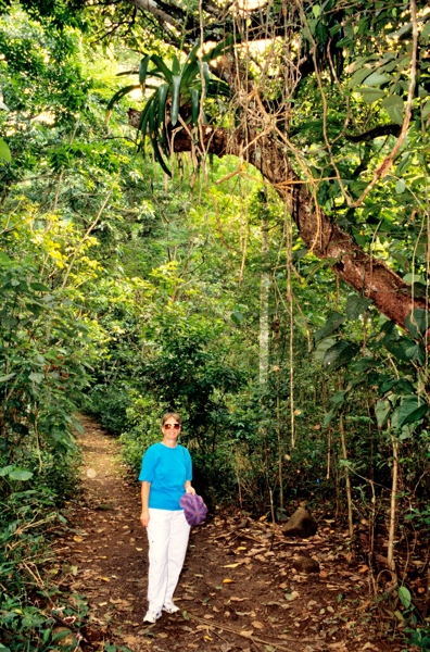 Plant growing on a tree above Rebecca's head near Carara National Park.