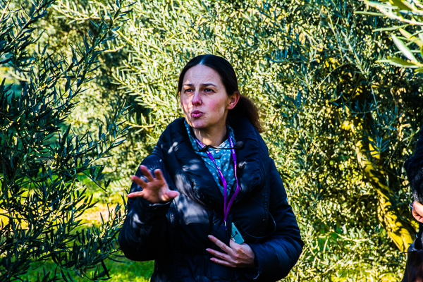 Owner of Moulin des Barres olive farm in their grove of olive trees in France.