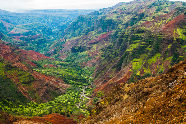 Waimea Canyon at the Puu Hinahina View Point in Kauai.