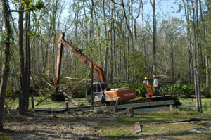 Trees removed from bayou behind house.